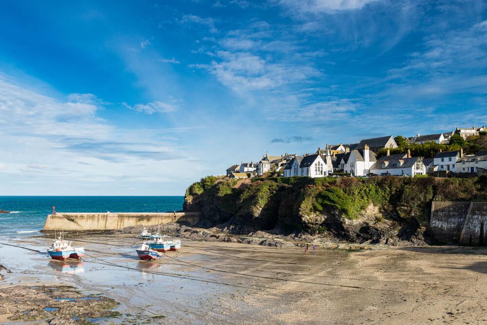 Dog Friendly Beaches North Cornwall