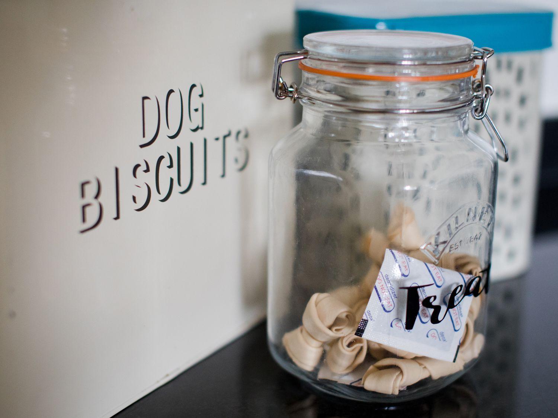 guest information folder - dog biscuits