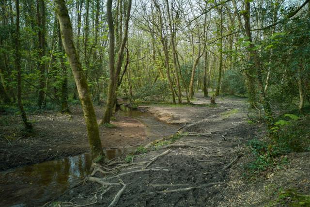 Pentewan Valley Clay Trail