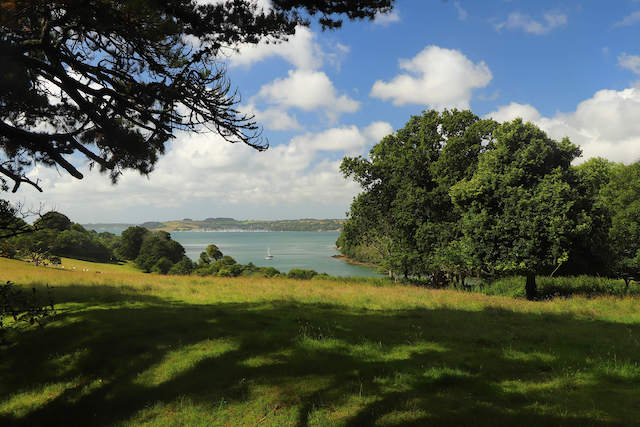Best walks in Cornwall - Trelissick