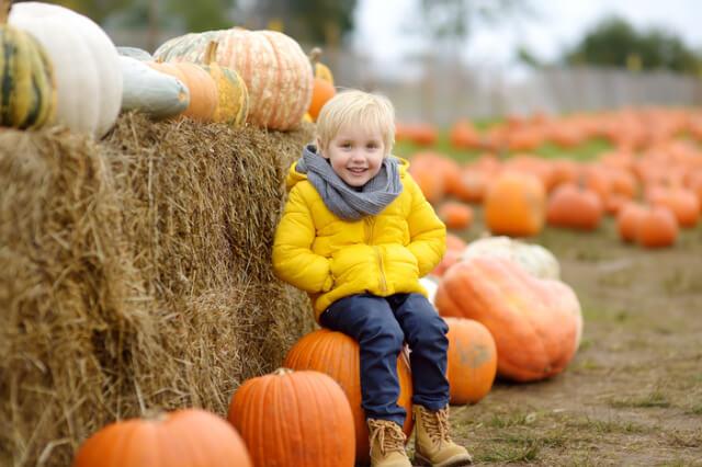 little boy sat on a pumpkin in front of a hay bale
